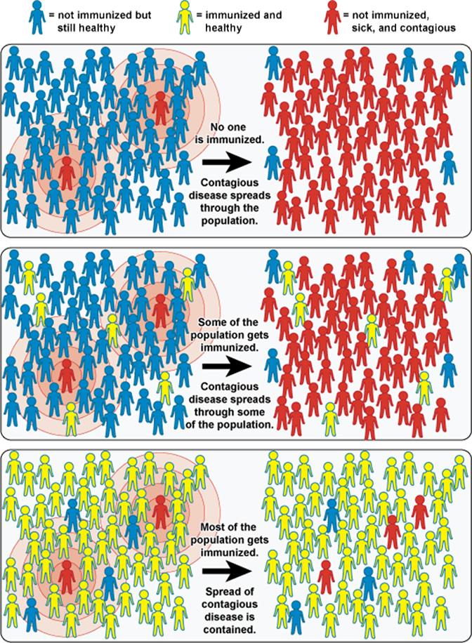 Herd Immunity